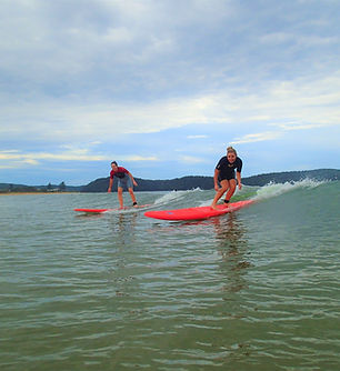 adult surf lessons central coast