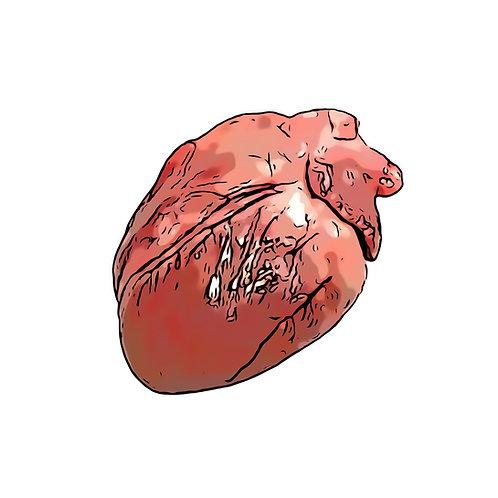 Herz, 300g