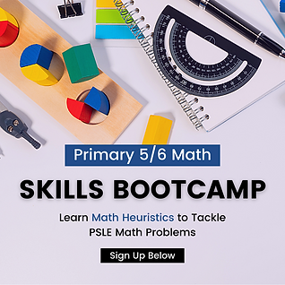 Primary 6 Math Bootcamp