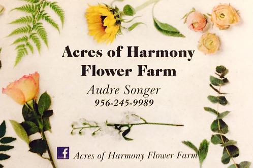 Harmony  Flower Farm