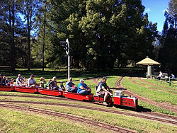 1394_Narara-Steam-Trains-Playing-in-Pudd