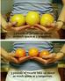 MUSCLE V FAT COMPARISON