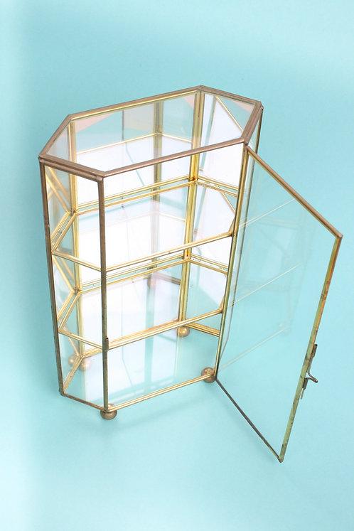 Mini vitrine terrarium