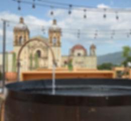 Oaxaca Rooftops. 2017_edited.jpg