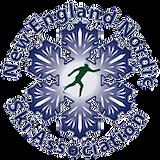 NENSA_Logo_200x200_transparent.png