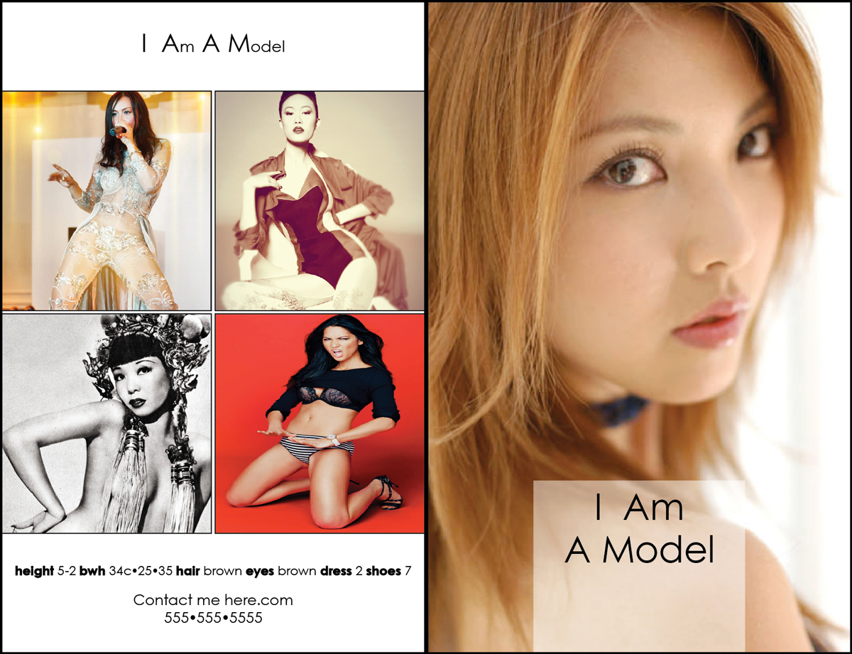MODEL CARDS
