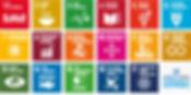 S_2018_SDG_Poster_A3_with_UN_emblem.jpg