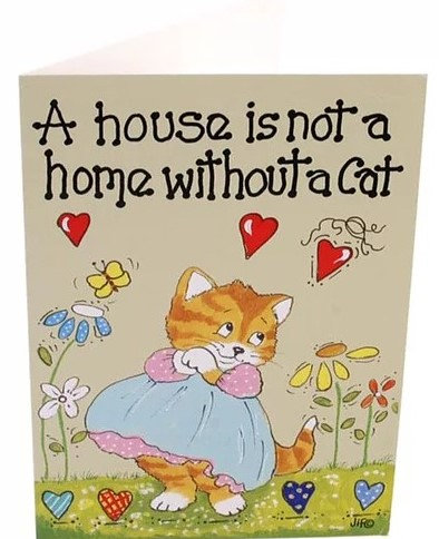 A House Is Not A Home Without A Cat Greeting Card, Gifts Galore Direct To Your Door By PET TAGS DIRECT Dublin Ireland,