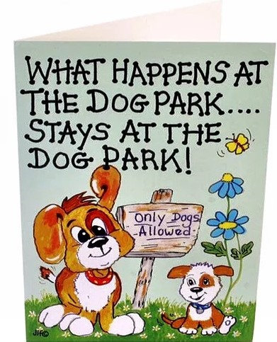 The Dog Park Greeting Cards, Fun Greeting Cards, Gifts Galore Direct To Your Door By PET TAGS DIRECT Dublin Ireland,