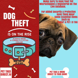 DOG THEFT IS ON THE RISE  PET TAGS DIREC