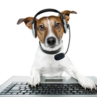 PET TAGS DIRECT Customer Care Team