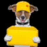Pet Tags Direct Transparent.png
