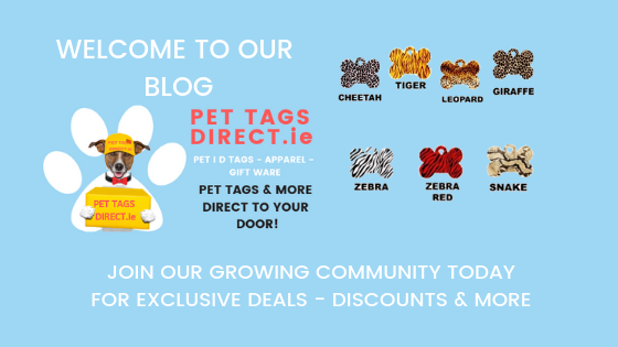 PET TAGS DIRECT Blog Page Image Showing PET TAGS DIRECT Logo With Dog Delivering Pet I D Tags Direct To Customers Doors With A Selection Of Pet I D Tags In Various Shapes And Sizes With Multiple Styles