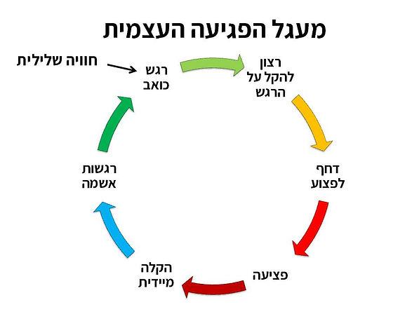 מעגל הפגיעה העצמית.jpg