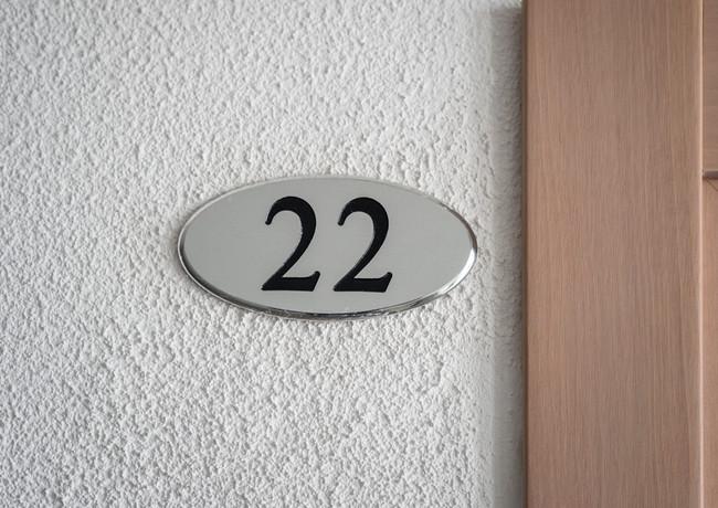 Camera 22
