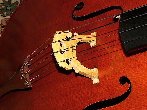 Cello made by JW Robinson 2010, Quilted,