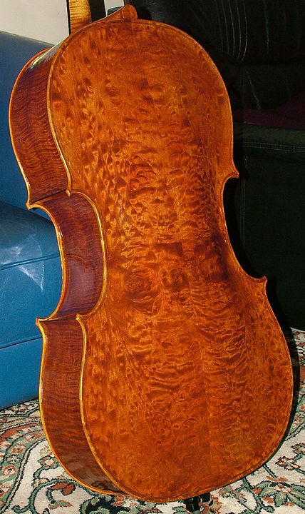 Cello made by JW Robinson, 2010, Quilted