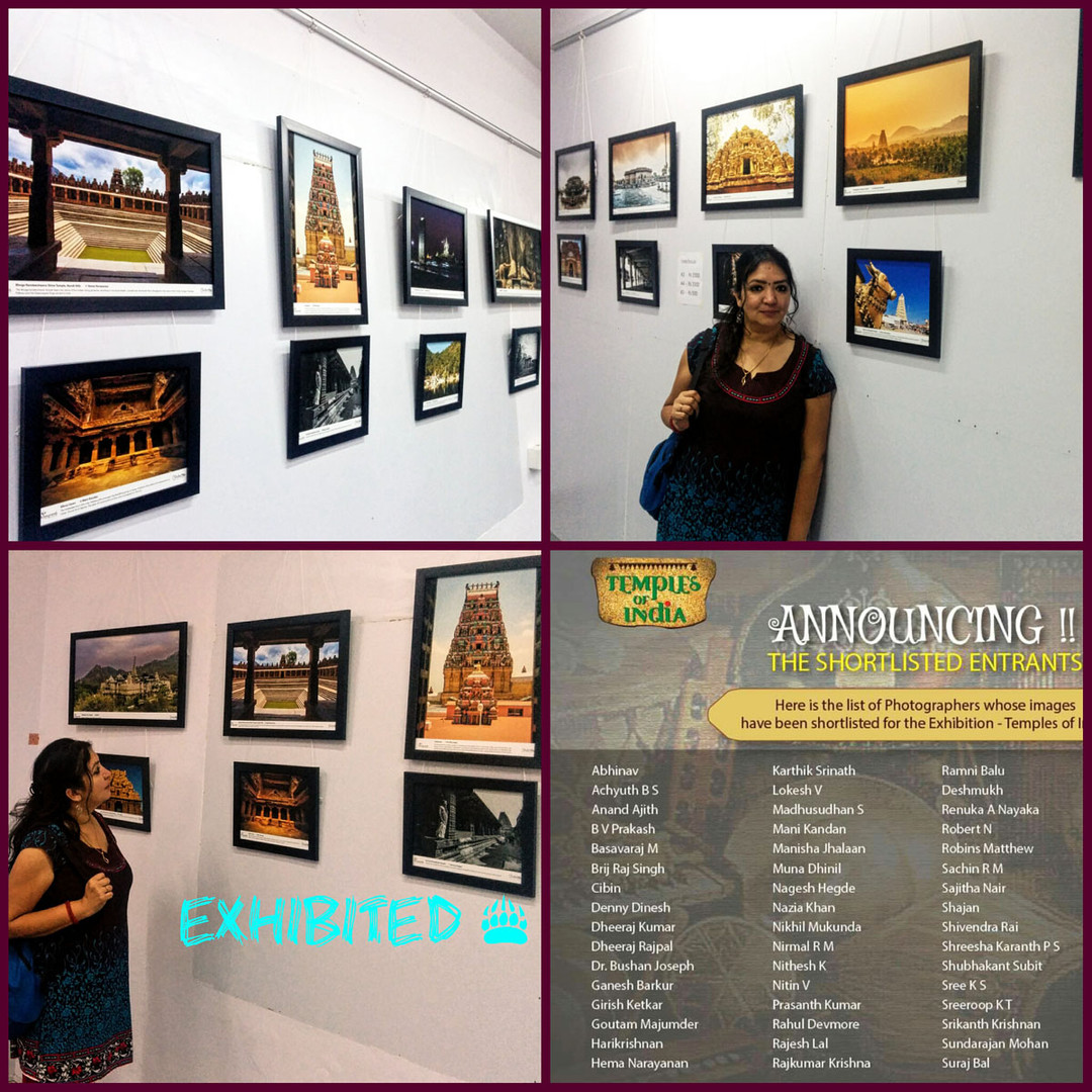 Temples of India June 2016 Expo by Honeycomb