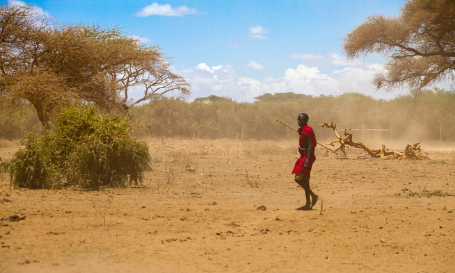 The Masai Warrior