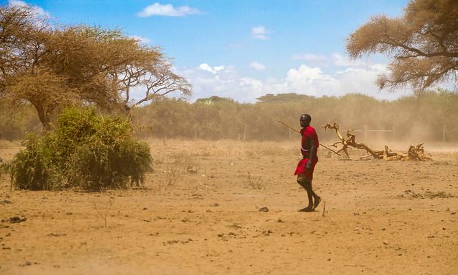 The Masai Warrior