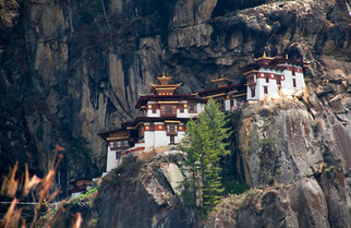 The Tiger Monastery