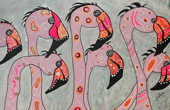 Flamingos i rosa