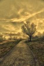 Bild 4 by artist Igor Vitomirov