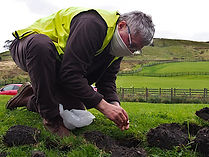 Image of Neil Williams Planting Crocus Bulbs