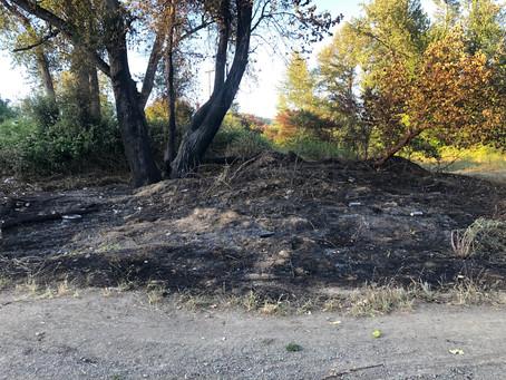 Firework Sparks Wildfire Northwest of Myrtle Creek
