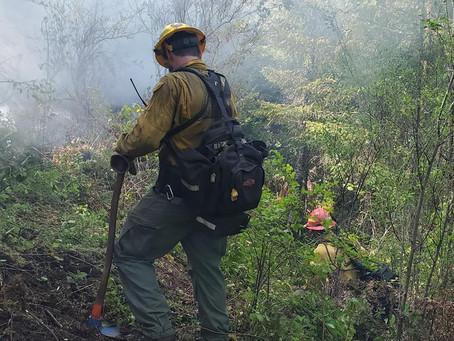 Pickett Fence Fire