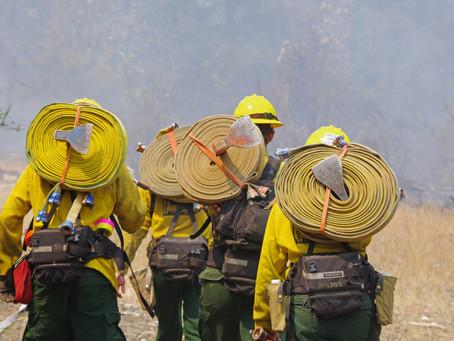 Iverson Park Fire