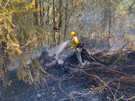 Burnt Mountain Fire