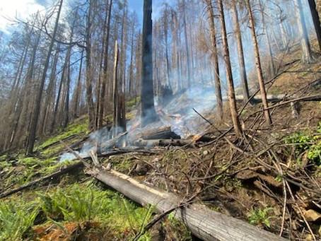 Cobble Creek Fire