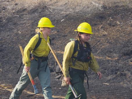 Camas Mountain Fire