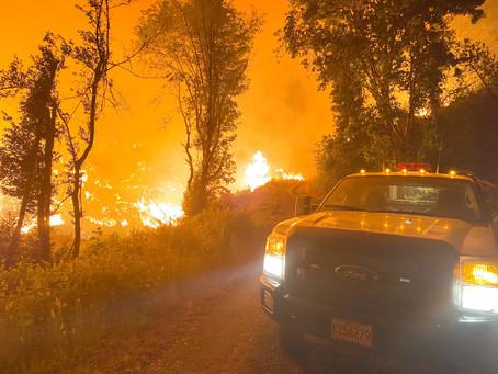 Mehl Creek Fire