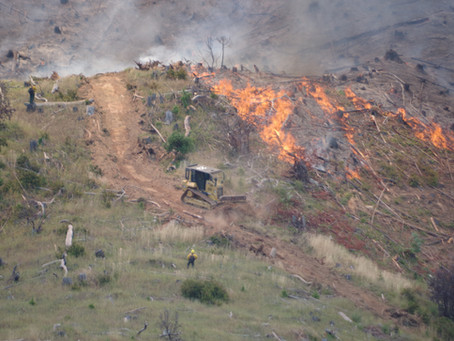 Days Creek Road Fire:  Tuesday Morning Update