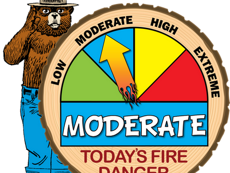 Rainfall Lowers Fire Danger