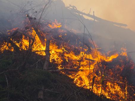 Elkhead Road Fire & Hayhurst Road Fire