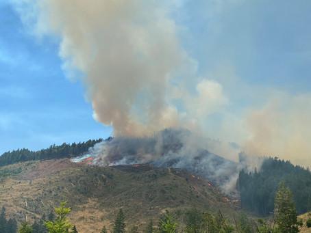 Days Creek Fire
