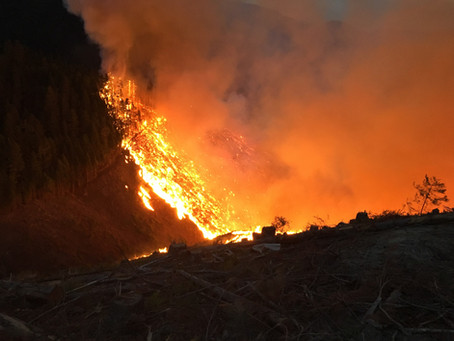 Days Coffee Fire & Lightning Fire Update (Thursday Morning)