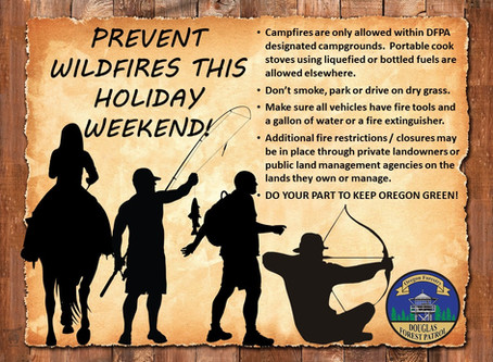 Help Prevent Wildfires This Holiday Weekend!
