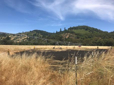 6-13-19 Hay Days Fire & Beals Creek Fire