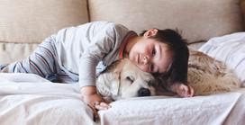 ¿Las mascotas son beneficiosas para los niños? ¡Acá te dejamos 8 razones que te convencerán!