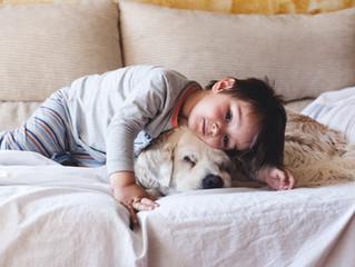 義理の実家に愛犬を連れて行って胸がジーンとしたこと