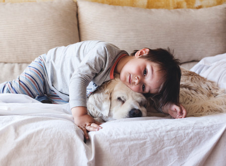 10 Ways Pets Make Us Healthier