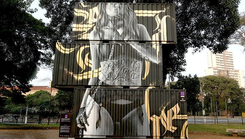 walls, supernova, graffiti, spray art, street art, edmx, realism, urban arte, arte de rua, containers, graffiti containers, sp, são paulo, girl power, pin up