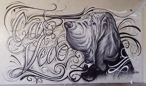 cao veio, cão véio, graffiti, henrique montanari, edmx, cão véio brasília, fogaça, master chef, henrique fogaça, kichi, badaui, cpm 22, caligrafia, lettring, caligraphy, street art, arte urbana, rua, interior design