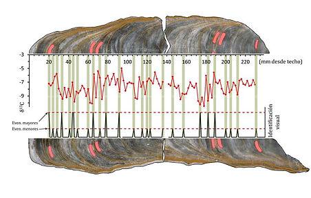 Representación de datos isotópicos en el interior de una estalagmita