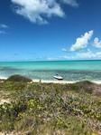 Iguana Island - South Caicos