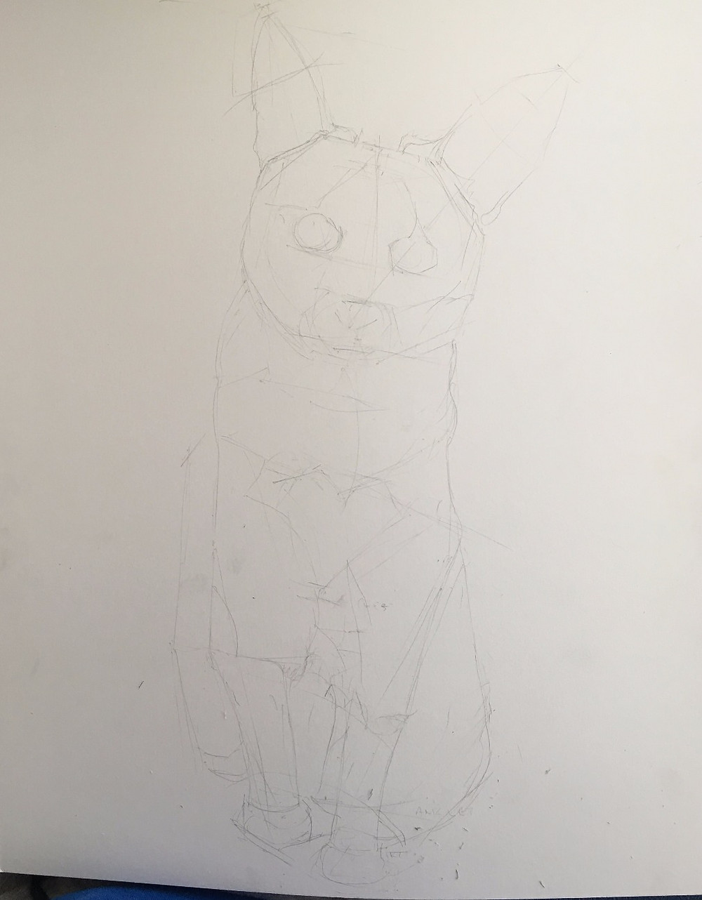 Sketch of a cat sitting